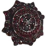 Vintage Star Shaped Bohemian Garnet Brooch
