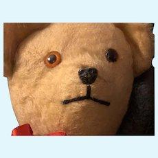 Cute Mohair Teddy Bear