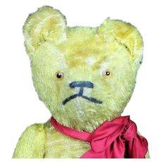 """Vintage 1920's 17"""" Teddy Bear"""