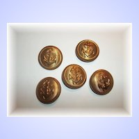 Five Vintage Rope Anchor Golden Tin Buttons