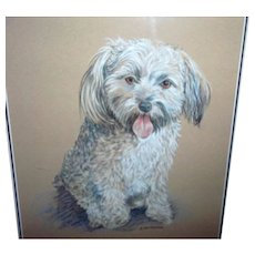 Framed Puppy Dog Portrait Artist Signed Gainsborough Galleries