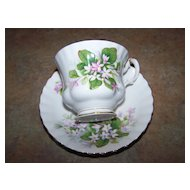 Royal Albert  England Mayflower Tea Cup & Saucer