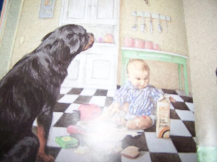 a charming children s book first edition good dog carl
