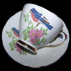 Oh Such A Sweet  Vintage Sutherland Blue Bird Pink Floral Tea Cup Saucer Set England