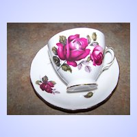 Pretty Vintage Tea Cup & Saucer Rose Floral Motif  Royal Vale
