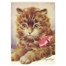 """Charming Vintage Postcard Post Card Kitten Kitty Cat """" Wishing You The Best of Luck """"  Taylor"""