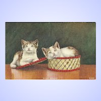 "Oh What A Lovely Vintage Kitten Post Card Post Card "" Wide Awake """