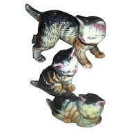 Tiny Majolica Style Ceramic Tabby Pussy Cat Figurine Family