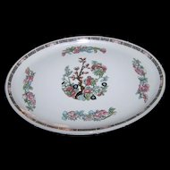 Oval Indian Tree Style Pattern Royal Doulton Platter Steelite Hotel Ware