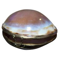 A Precious Vintage Real Shell Souvenir Sentimental Trinket Container Brass Wire Wrapped