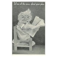 Vintage Dressed Up Kitty Cat Real Photo Postcard A Genuine Frees Animal Series Card