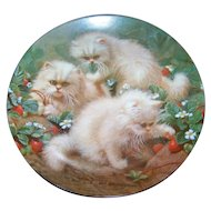 Charming Collector Plate Knowles 1988 Strawberries and Cream : Cream Persians by Amy Brackenbury