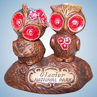 Advertising Ceramic Owl Salt & Pepper Shakers Treasure Craft USA Glacier National Park