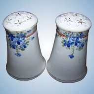 Hand Painted NIPPON Blue Floral Themed Porcelain Salt & Pepper Shakers