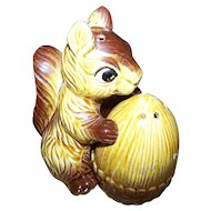 Charming Vintage Ceramic Squirrel with Nut Salt & Pepper Spice Shaker Set  Japan