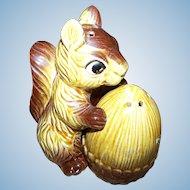 Charming Vintage Ceramic Squirrel with Nut Salt & Pepper Spice Shaker Set  Japan