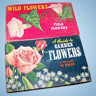 2 Charming Small Vintage Hard COver Books by Whitman Publishing Field Flower & Garden Flowers Illustrated