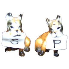 Tiny Mini Salt & Pepper Shakers Giftcraft Boxer Puppy Dogs