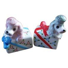 Sweet VTG Ceramic Poodle Puppy Dog Wrapped Present Salt & Pepper Spice Shakers JAPAN