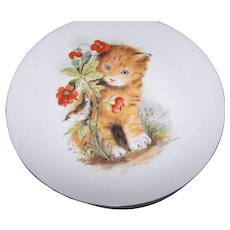 A Charming Porcelain Artist Signed Ginger Tabby Kitty Cat Decorative Plate by John Evans