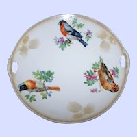 Germany Porcelain Handled Plate With Bird Theme Home Decor Accent
