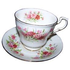 Pretty Paragon Fine Bone China Tea Cup & Saucer English Flowers Carnations