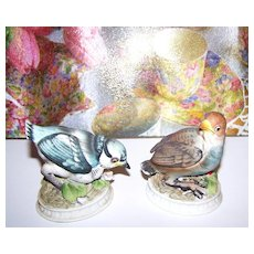 L' Amour China Bird Figurines Blue Jay & Snow Bird