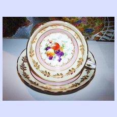 Pink Mixed  Fruit Motif Grosvenor Tea Cup & Saucer