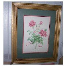 Pretty Vintage  Framed Botanical Print  Madame Rose Ann Gethen