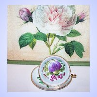 Pretty Mixed Berry Fruit Tea Cup & Saucer Royal Grafton