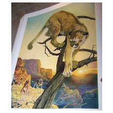 Out Door Life The Big Game Animals of North America H.C. Book