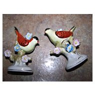 Hand Painted Figural Birds and Blooms Salt & Pepper Shakers