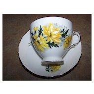 Vintage Royal Vale Tea Cup & Saucer