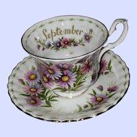 Flowers of the Month Series Michaelmas Daisy September Royal Albert Teacup Saucer
