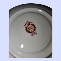 Queen Anne Fine Bone China Lady Teacup Saucer Set