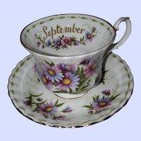 September Flower Month Series Teacup Saucer Royal Albert