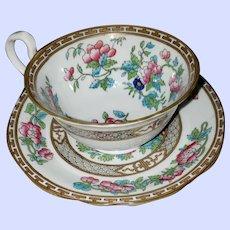 Decorative Indian Tree Tea Cup Saucer Set Aynsley England
