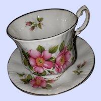 Paragon Fine Bone China Tea Cup Saucer Prairie Rose Canadian Provincial Series