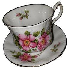 Paragon Fine Bone China Tea Cup Saucer Prairie Rose Canadian Provincal Series