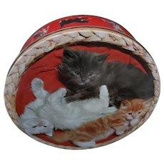Sweet Vintage  Kitty Cat Themed Advertising Tin Carrs of Carlisle England