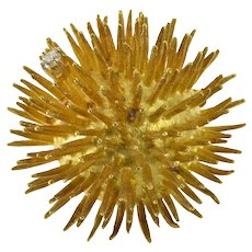18K Diamond Ornate Sea Urchin Design Fashion Pin/Brooch Yellow Gold [QRQX]