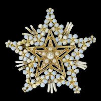 14K Victorian Seed Pearl Floral Enamel Star Pin/Brooch Yellow Gold [CQXK]