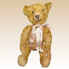 Wonderful Old German Well Loved Jointed Bear