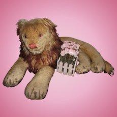 """Wonderful Large Vintage Steiff Lion """"Leo"""" 26"""" Circa 1950's"""