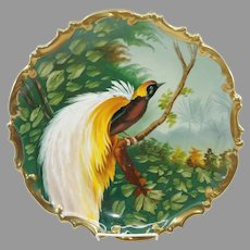 """Austrian H.P. 13"""" Bird of Paradise Hanging Charger w/ Rococo Border"""