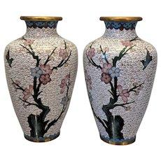 Pair Vintage Chinese Cloisonne White Blossom Branch Ginger Vases