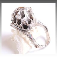 Fine Silver Wasp Ring With Real Wasp Nest Branch Ring Twig Ring Silver