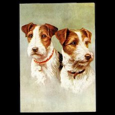 Wire Haired Fox Terrier embossed Dog Postcard