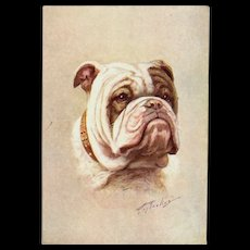 The Bulldog Embossed Artist Signed Postcard