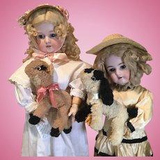 Pair of Vintage Wool Spring Lambs